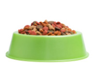 Find Cheap Dog Food and Supplies