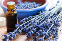 Find Local Aromatherapy